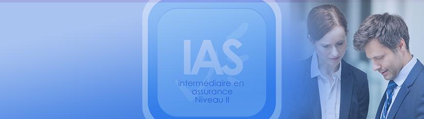 Bannière de l'IAS Niveau II