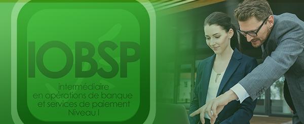 Bannière de l'IOBSP Niveau I